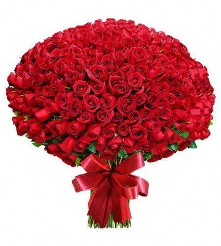 bouquet D43